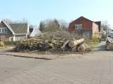 Dorpsstraat boomvrij